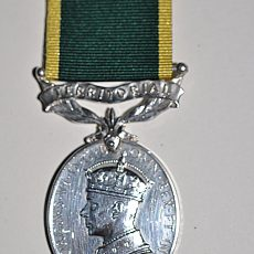 Territorial Efficiency Medal Obverse