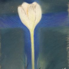 045a Eternal Flower pastel by Debbie Jenkins